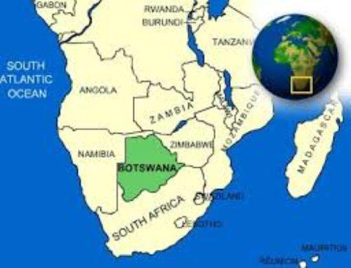 Tod@s l@s humanos provenimos del Norte de Botswana